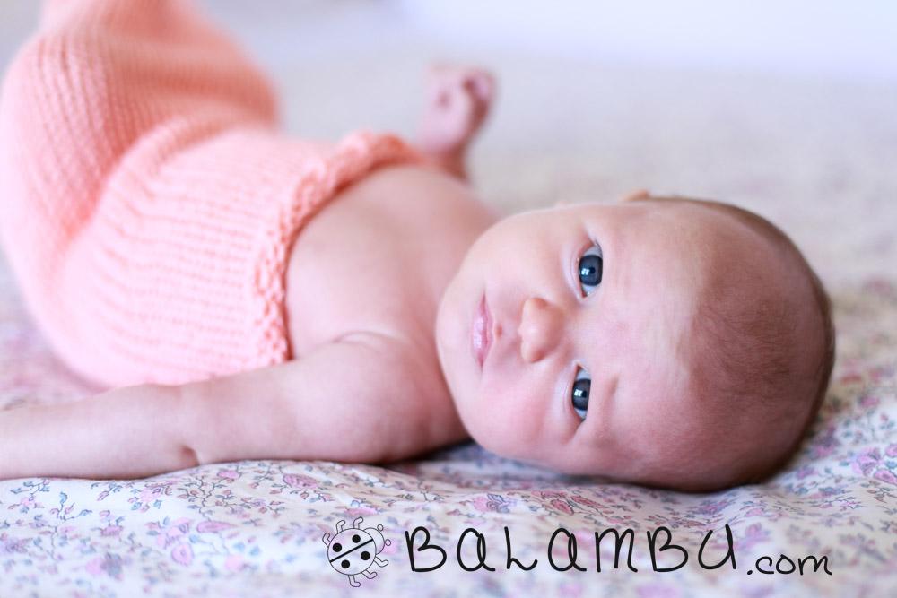 Balambu fotografia